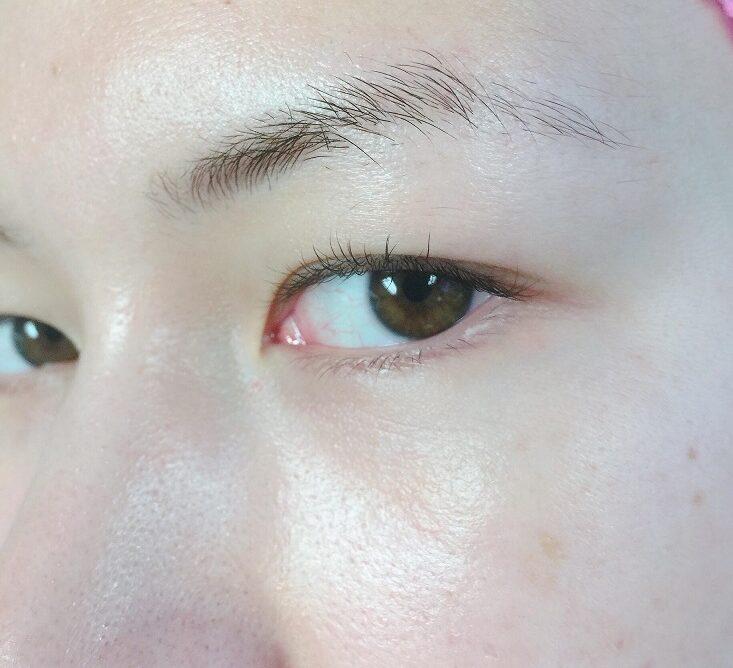 Before Eyebrow Microblading